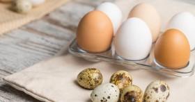 Польза перепелиных яиц для женщин старше 40 лет