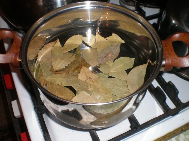 Отвар из лавровых листьев для лечения диабета