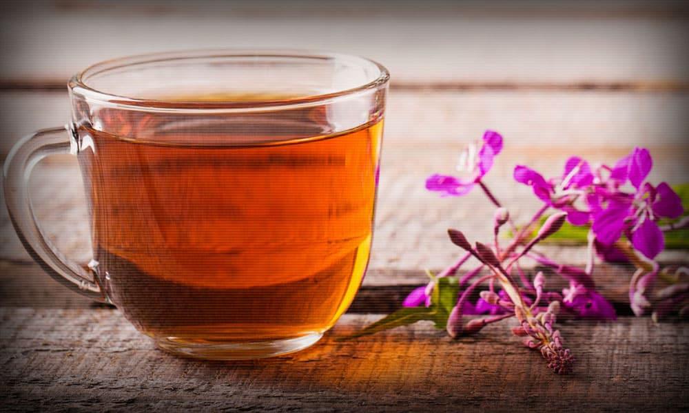 Иван чай (Кипрей) при геморрое: лечебные свойства, применение