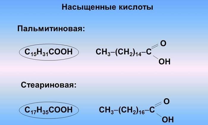 Насыщенные кислоты - жизненно необходимые соединения, которые оказывают прямое влияние на функцию кровообращения и предотвращают развитие тромбозов