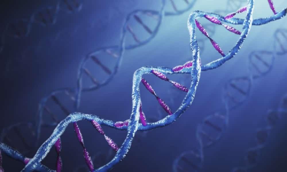 Расширению геморроидальных вен у мужчин способствует генетическая предрасположенность