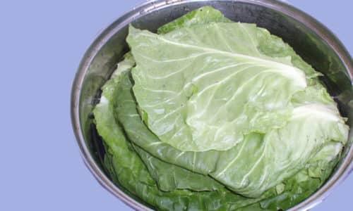 Для приготовления целебного средства листья и небольшое количество отрубей отвариваются в молоке