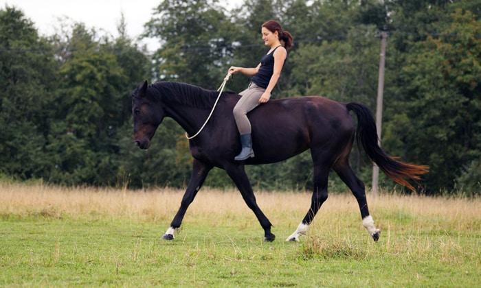 Нужно отказаться от катания на лошади