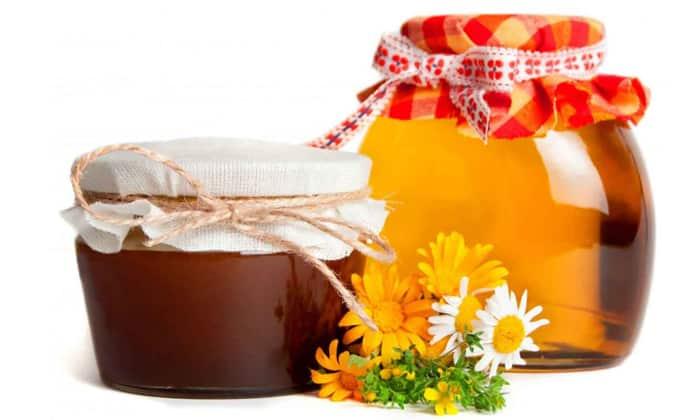 Лук можно использовать для лечении вместе с мёдом