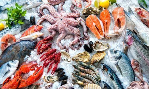 Для предупреждения железодефицита в рацион больного геморроем должны входить морепродукты