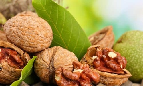 С древних времен для лечения геморроя используют различные виды орехов. Наибольшую ценность имеют грецкие орехи при геморрое, обладающие большим количеством целебных свойств