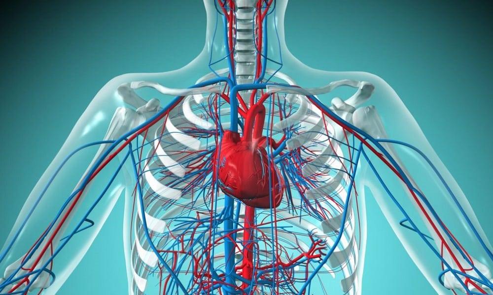 При патологиях сердечно-сосудистой системы запрещены операции под общим наркозом