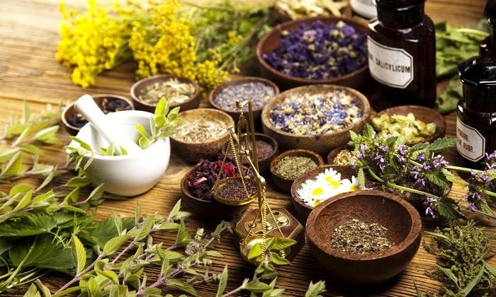 Отвары лекарственных растений с кровоостанавливающими, противовоспалительными, укрепляющими сосуды свойствами