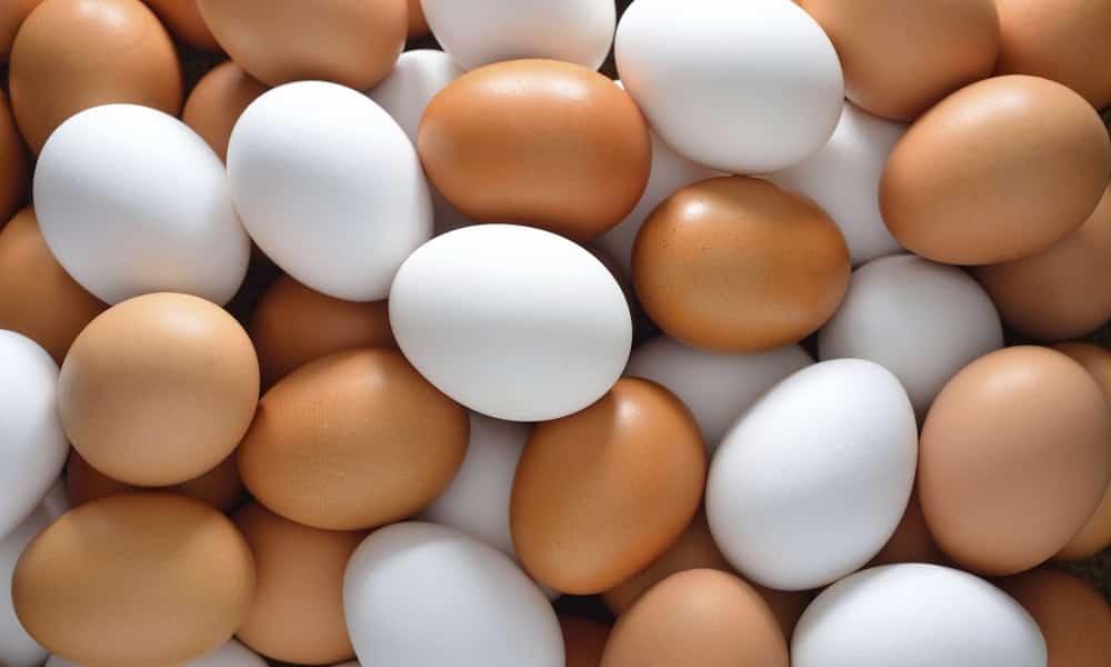 Яйца можно употреблять ежедневно