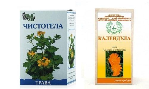 Чистотел и календула - лекарственные травы, применяемые от воспалений кожного покрова, геморроя и андексита