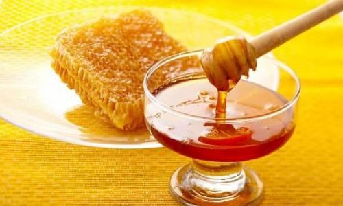 Мед способствует активизации функции моноцитов, стимулирует рост и размножение полезной микрофлоры кишечника
